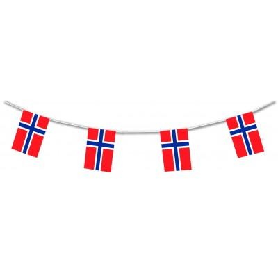 Bandierine in plastica Norvegia