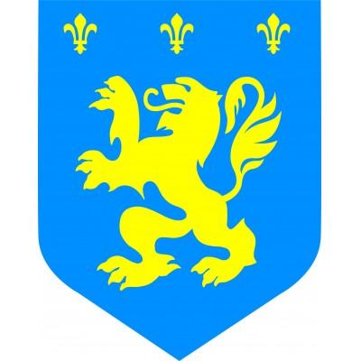 Cartonato medievale leone gialloblu