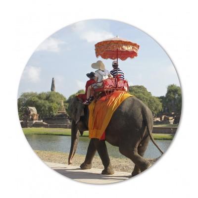 Cartonato elefante indiano